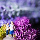 Miniature Adventures by fruitfulart