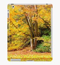 Autumn landscape iPad Case/Skin