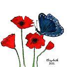 Quietly.... by Elizabeth Kendall