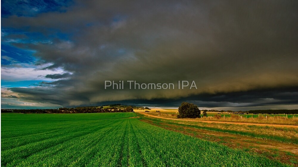 """Here It Comes"" by Phil Thomson IPA"