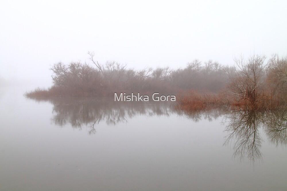 Brume by Mishka Gora