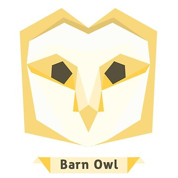 Barn Owl by annlytical