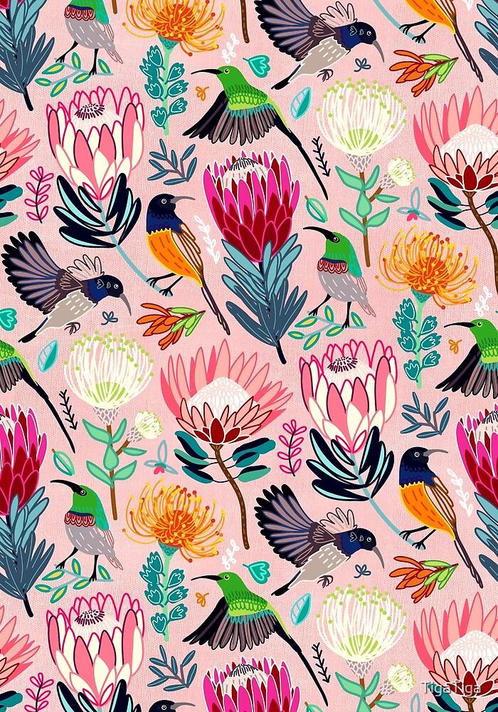 Sunbirds & Proteas  by TigaTiga