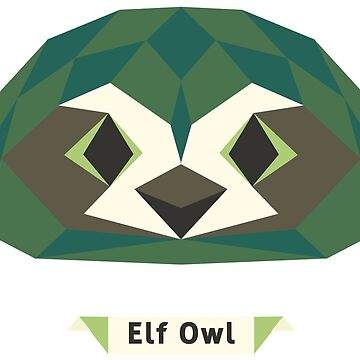Elf Owl by annlytical