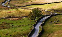 Kirkstone Pass, Lake District by Lorraine Parramore