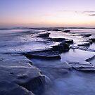 Lilac Walkway - Kimmeridge Bay, Dorset by Kathy White