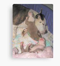 Jenova And The Puppies Canvas Print
