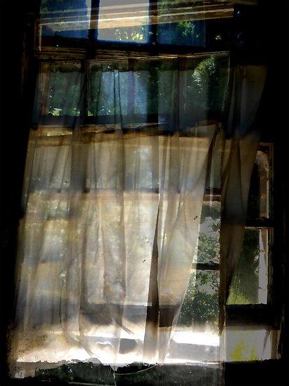 Dream Window ~ Harperbury by Josephine Pugh