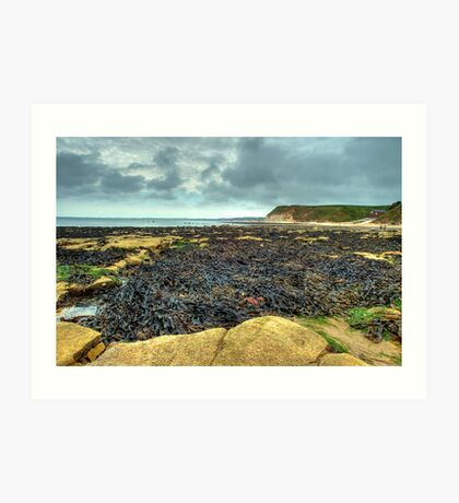 South Landing, Flamborough – looking towards Bridlington Art Print