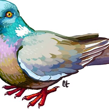 Pigeon by etall