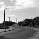 Chamberlain Drive by Joan Wild
