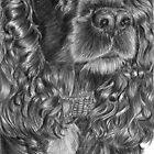 Cocker spaniel - Black - English by doggyshop