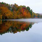 Autumn Reflections by artgoddess