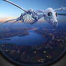 «El vuelo a casa» de billyboy