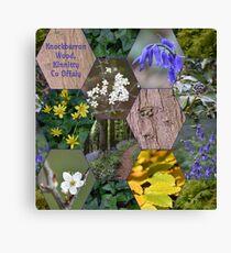 Knockbarron Wood Canvas Print