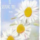 """Rumi-Zitat: """"Was Sie suchen, sucht Sie"""" von Clare Walker"""
