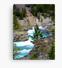 The Wild River Canvas Print