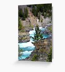 The Wild River Greeting Card