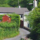 Bittaford Village von lezvee