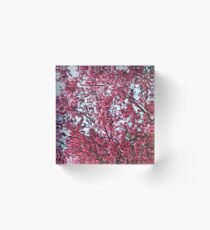 Magical Cherry Blossoms - Dark Pink Floral Abstract Art - Springtime Acrylic Block