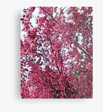 Magical Cherry Blossoms - Dark Pink Floral Abstract Art - Springtime Metal Print