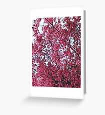 Magical Cherry Blossoms - Dark Pink Floral Abstract Art - Springtime Greeting Card