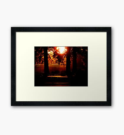 Silhouetted Memories Framed Print