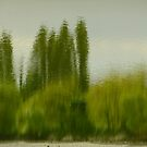 Lunch time Impressionism by Themis