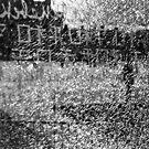 Broken Glass by Susan Chandler