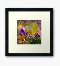 Iris Garden Framed Print