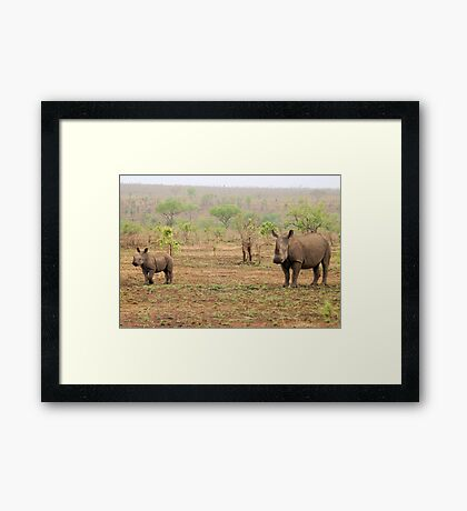 WHITE RHINOCEROS MOTHER AND BABY Framed Print