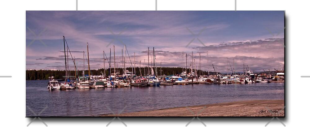 Port McNeil Marina by Gail Bridger