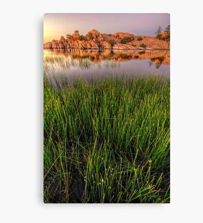 The Secret Life of Grass Canvas Print