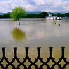 Flood of the Danube at town Vac_Hungary by ambrusz