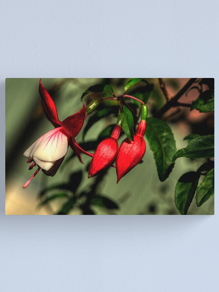 Alternate view of Natures Chimes with Bells Canvas Print