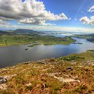 Connemara view by John Quinn