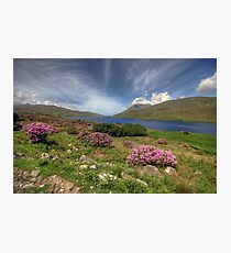 Killary Fjord Photographic Print