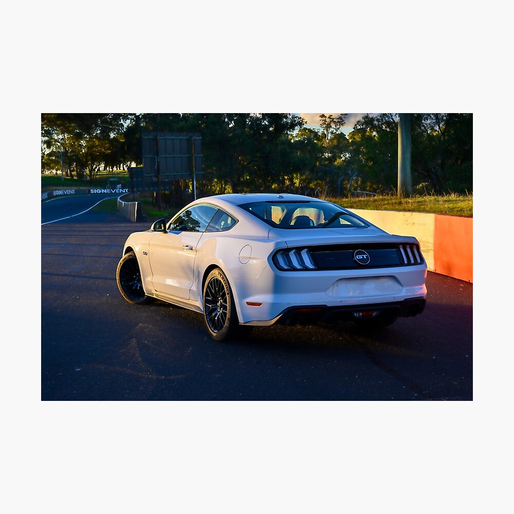Mustang on Mt Panorama Photographic Print