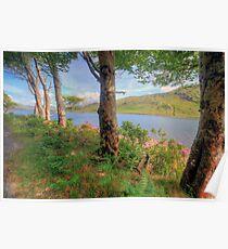 Scenic Connemara lake Poster