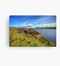 Connemara landscape Canvas Print