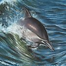 Dolphin Portrait by Richard Macwee