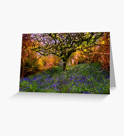 Bluebells And Tree Greeting Card