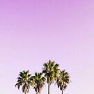 Landscape Photography of Four Coconut Trees von Gino S