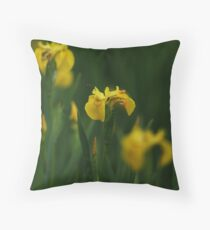 Its a Bee's Life Throw Pillow