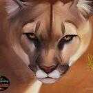 DTE - Mountain Lion by Jon Mack