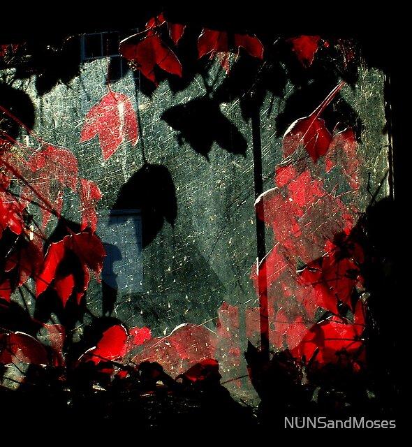 The Tithe barn window by NUNSandMoses