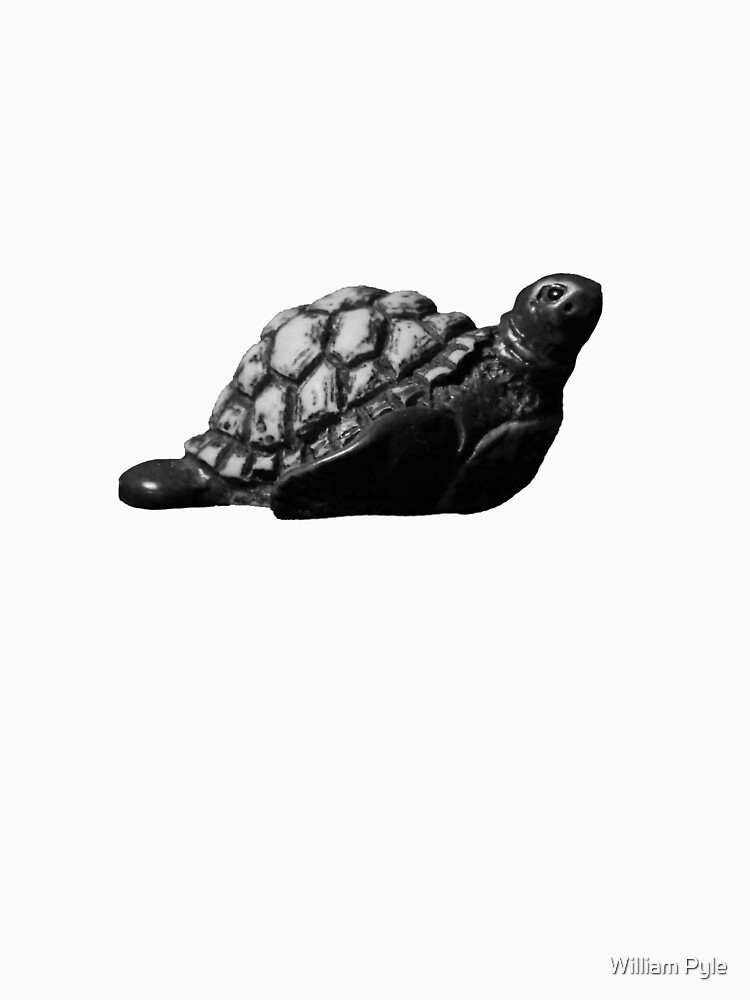 Turtle by brushes