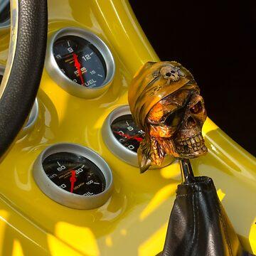 Skull Stick by SoulMatesPhoto