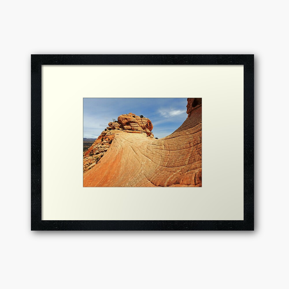 Lincoln's View Framed Print