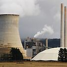 Wallerawang Power Station - NSW Australia by Phil Woodman